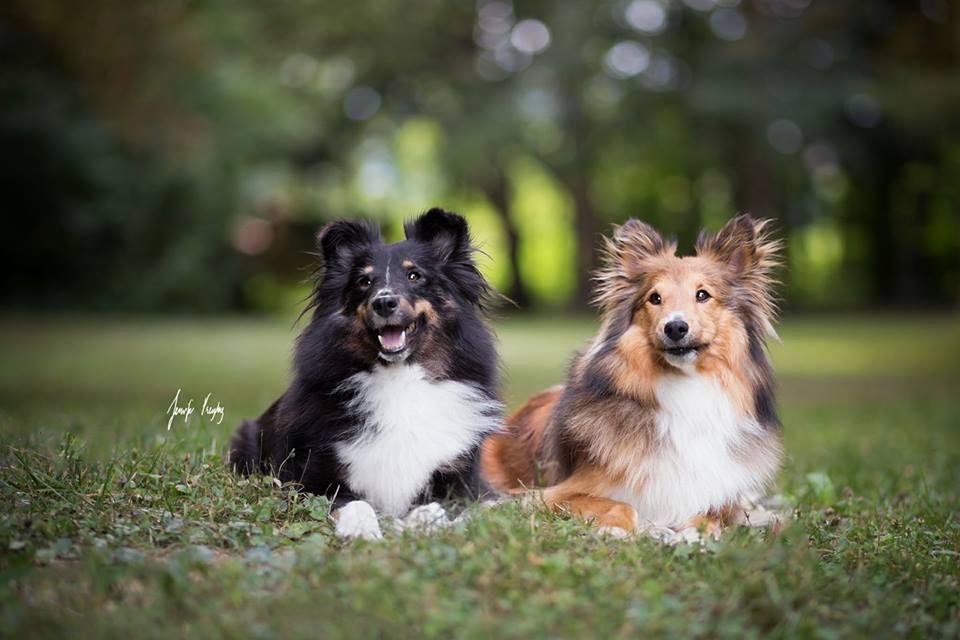Zelda und Leya Juli 2017