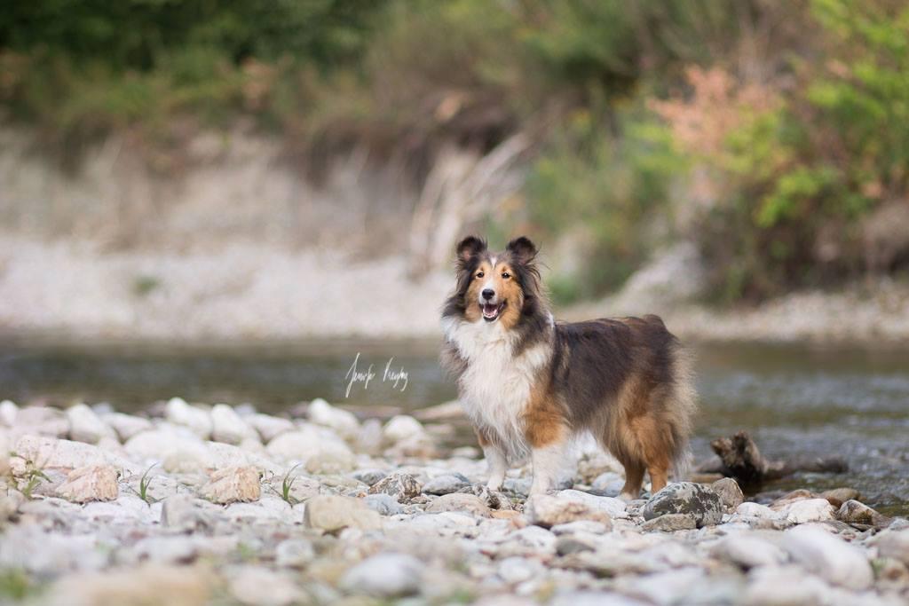 Winnie16.August 2015